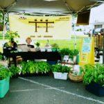 Tillamook Community Organizations