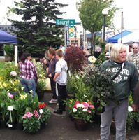 Tillamook Attraction Farmers Market
