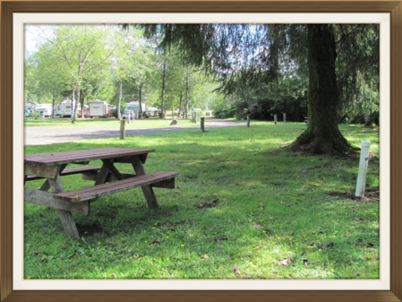 Tillamook Lodging Campgrounds RV Parks