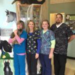 Tillamook Veterinary Services