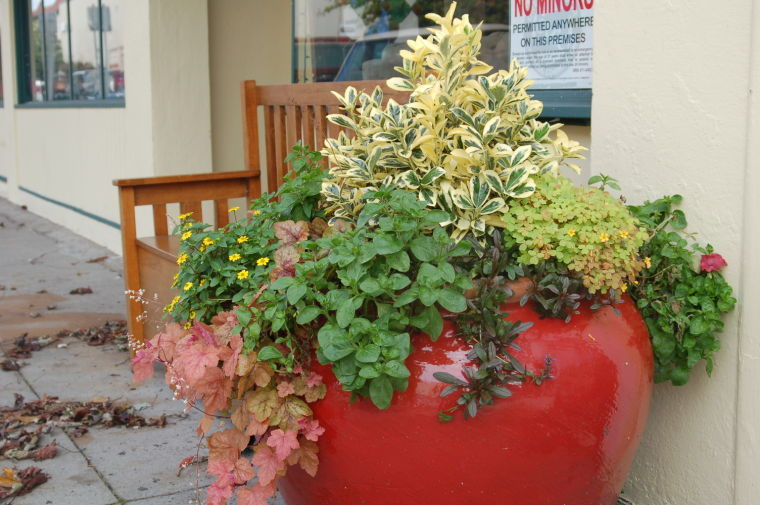 Chamber Planter Program: Request for Proposal